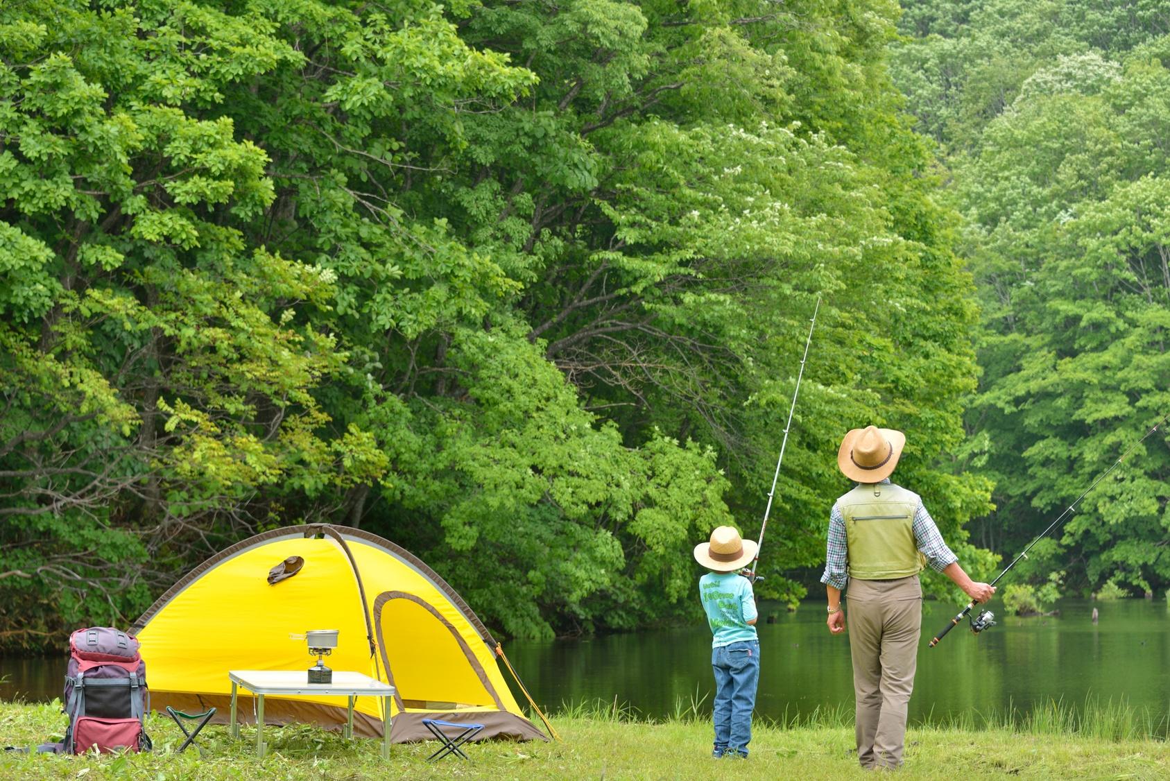 Vamos acampar?