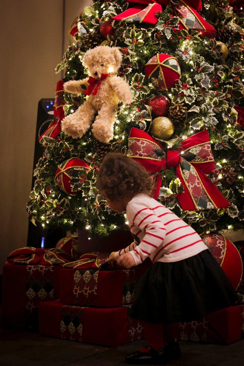 Como decorar uma Árvore de Natal